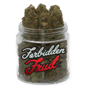 forbidden fruit strain