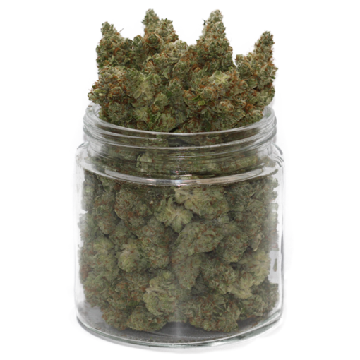 scout master strain